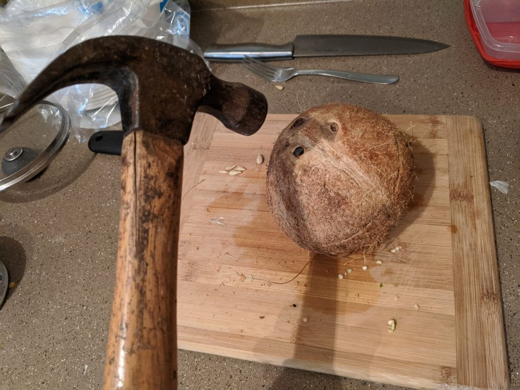 Hitting a coconut with a hammer