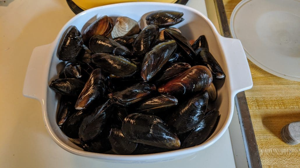 Mussels and clams in a pot